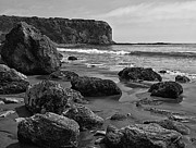 Dolphin Digital Art Framed Prints - Shoreline Near Abalone Cove Framed Print by Ron Regalado