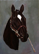 Metalwork Painting Framed Prints - Show Horse Framed Print by Diane Howe