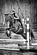 Canadian Grand Prix Framed Prints - Show Horse Jumping  Framed Print by Jt PhotoDesign
