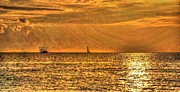Beach Fence Digital Art Posters - Shrimp and Sailboat at sunset Poster by Michael Thomas