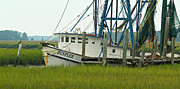 Hunting Island Posters - Shrimp Boat and Pelican - Lowlands of South Carolina Poster by Anna Lisa Yoder