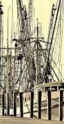 Sail Fish Prints - Shrimp Boat Print by Debra Forand