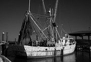 Shrimp Boat Prints - Shrimp Boat Print by Douglas Stucky