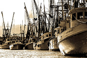 Philip Heim - Shrimp boats docked