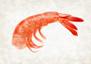 Close Up Painting Metal Prints - Shrimp Metal Print by Danny Smythe