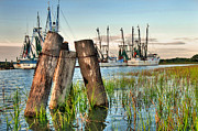Lowcountry Prints - Shrimp Dock Pilings Print by Scott Hansen