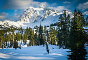 Harmonious Framed Prints - Shuksan Winter Paradise Framed Print by Inge Johnsson
