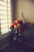 Flower Still Life Posters - Shutters Poster by Laurie Search
