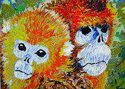 Featured Pastels Originals - Sichuan Golden Monkey  by David Olson
