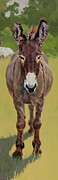 Donkey Paintings - Sicilian by Patricia A Griffin