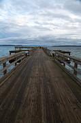 John Daly - Sidney Pier Winter Walk