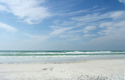 Rosie Brown - Siesta Key Beach