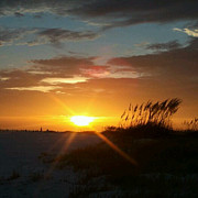 Dyana Jean - Siesta Key Sunset 12