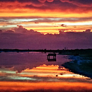 Dyana  Jean - Siesta Key Sunset 17