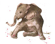 Elephant Art Framed Prints - Siesta Sophie Elephant Framed Print by Alison Fennell
