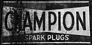 Champion Photo Prints - Sign of an old Champ Print by David Lee Thompson