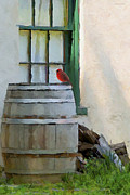 Rain Barrel Metal Prints - Signs Of Spring Metal Print by Ron Jones