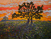 Locust Sunset Metal Prints - Silent Blaze Metal Print by Michael Gross