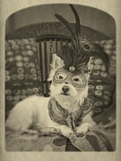 Canine Photo Prints - Silent Film Star Print by Edward Fielding