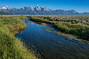 Gros Ventre Posters - Silent Pathway to the Grand Tetons Poster by Sandra Bronstein