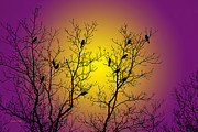 Silhouette Digital Art - Silhouette Birds by Christina Rollo