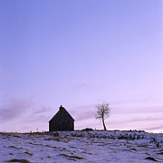 Snow-covered Landscape Metal Prints - Silhouette of a farm and a tree. Cezallier. Auvergne. France Metal Print by Bernard Jaubert