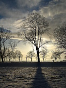 Framed Winter Snow Photograph Posters - Silhouettes and a Long Winter Shadow  Poster by Brian Chase