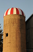 Barn And Silo Prints - Silo at Sunset Print by Renee Forth Fukumoto