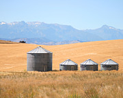 Grain Bin Posters - Silo Meadows Poster by Country Dove
