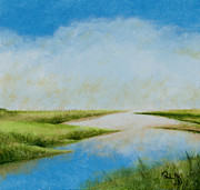Eye On The Gulf Coast - Silt Island Marsh 1 by Paul Gaj
