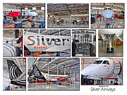 Airways Posters - Silver Airways Large Composite Poster by Diane E Berry