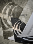 Airways Posters - Silver Airways Tail Logo Poster by Diane E Berry