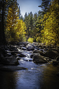 Silver Creek Print by Mitch Shindelbower