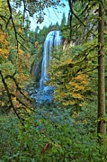 Unique Waterfalls Framed Prints - Silver Falls Through The Trees Framed Print by Adam Jewell
