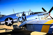 P51 Mustang Posters - Silver Mustang Poster by Chris Smith