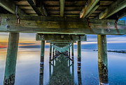 Long Sands Posters - Silver Sands Jetty Poster by Randy Scherkenbach