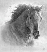 Wild Horse Digital Art Prints - Silver Storm Print by Renee Forth Fukumoto