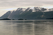 All - Silver Sunset Glacier Bay by Tom Wurl