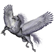 Corey Ford - Silver Winged Pegasus