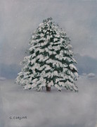 Snow Pastels - Simple Beauty by Carol Corliss