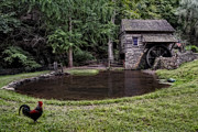 Waterwheel Posters - Simple Country Life Poster by Susan Candelario