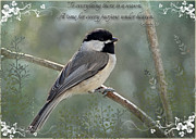 Debbie Portwood - Simply Chickadee with...