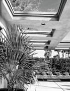 Midcentury Photo Posters - SINATRA PATIO BW Palm Springs Poster by William Dey