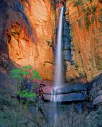 Frank Houck - Sinawava Falls