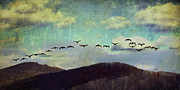 Canadian Geese Mixed Media - Since I Met You Baby by Trish Tritz