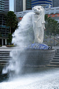 Pete Reynolds - Singapore Merlion