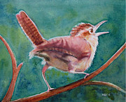 Sarah Buell  Dowling - Singing Wren