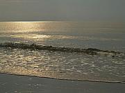 2009 Photo Prints - Single Breaker at Dawn on Hunting Island  Print by Anna Lisa Yoder