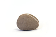Single Pebble Against White Background Print by Natalie Kinnear