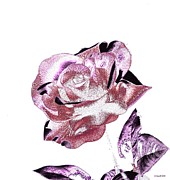Souls Prints - Single Rose IX Print by Annie Zeno